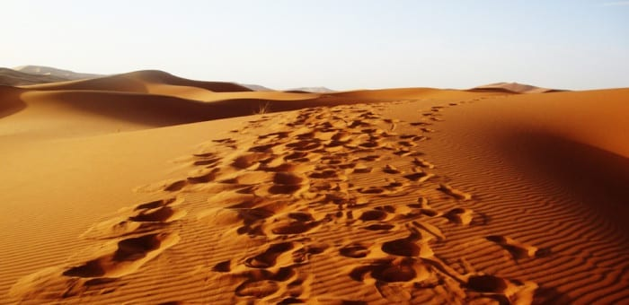 family adventures in Morocco
